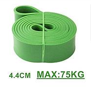 Эспандер 20-75 кг (4,4)