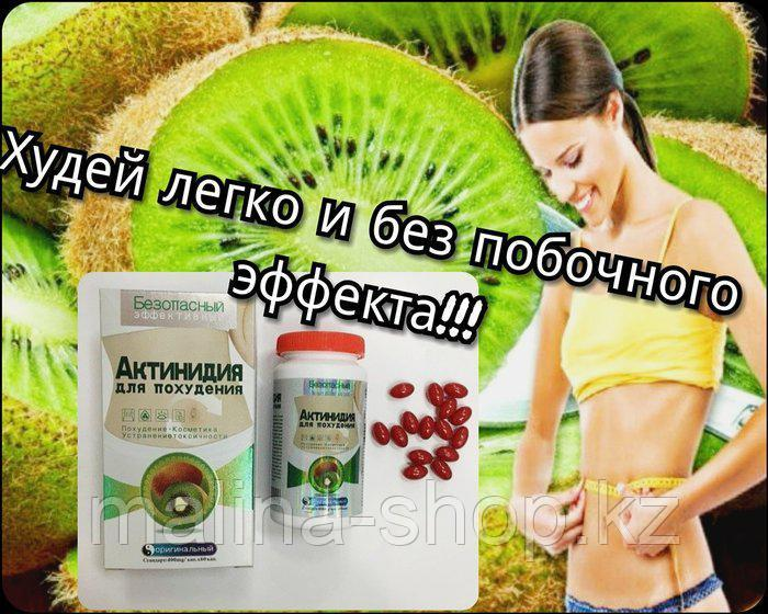 Актинидия  капсулы для похудения  БАД