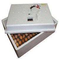 Инкубатор Несушка на 104 яйца 220 / 12 Вт Автоматический