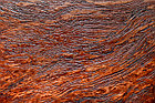 Декоративная штукатурка Arcobaleno Plastico Decoro Fattura, фото 3