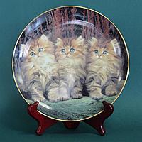 Коллекционная тарелка «Три котенка» Великобритания