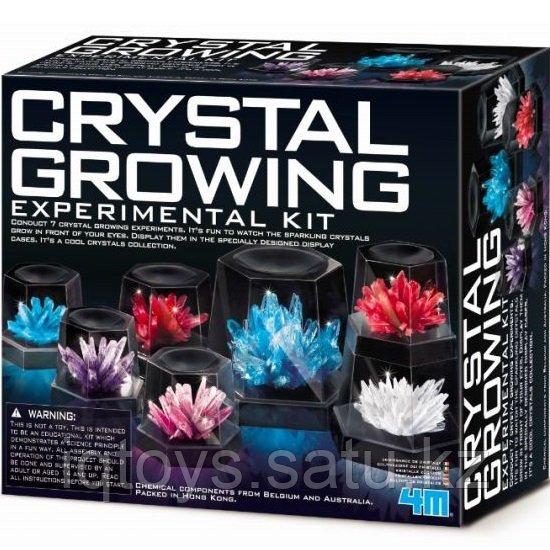 4M Удивительные кристаллы (Большой набор)