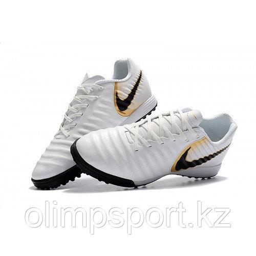 Обувь футбольная Nike