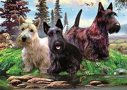Dino puzzle Пазл из 1000 деталей. Три собаки