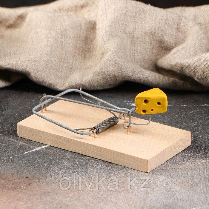 """Мышеловка деревянная """"Ретро"""", 120 х 60 х 1 см"""