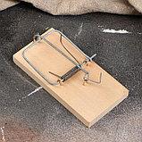 """Мышеловка деревянная """"Ретро"""", 120 х 60 х 1 см, фото 2"""