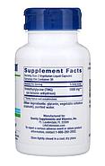 Life Extension, TMG (триметилглицин), 500 мг, 60 вегетарианских капсул с жидким содержимым, фото 4