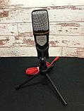 Микрофон конденсаторный SF-666, фото 2