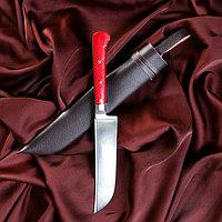 Нож Пчак Шархон - оргстекло, ёрма, гарда олово ШХ-15 (11-12 см)