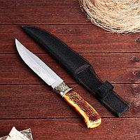 Нож охотничий 28 см, в чехле, рукоять под кость, с узором