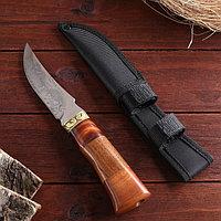Нож охотничий, в чехле, 23 см, лезвие с узором, рукоять деревянная