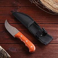 Нож туристический 16 см, в чехле, деревянная рукоять с выемками