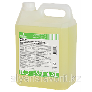 Bath DZ- средство для мытья и дезинфекци унитазов и сантехники- концентрат. 5 литров. РФ, фото 2