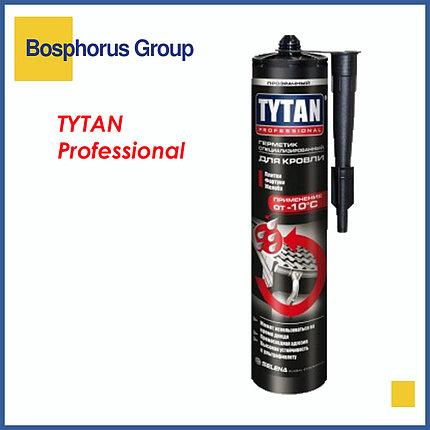 Герметик TYTAN для кровли специализированный, прозрачный, фото 2