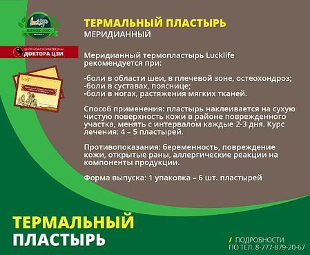 МЕРИДИАННЫЙ ТЕРМОПЛАСТЫРЬ, фото 2