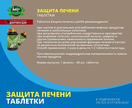 ЗАЩИТА ПЕЧЕНИ, фото 2
