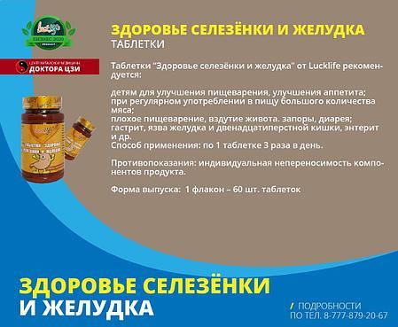 ЗДОРОВЬЕ СЕЛЕЗЁНКИ И ЖЕЛУДКА, фото 2