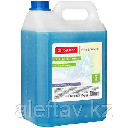 Мыло антибактериальное для рук  5 литров , густое, фото 2