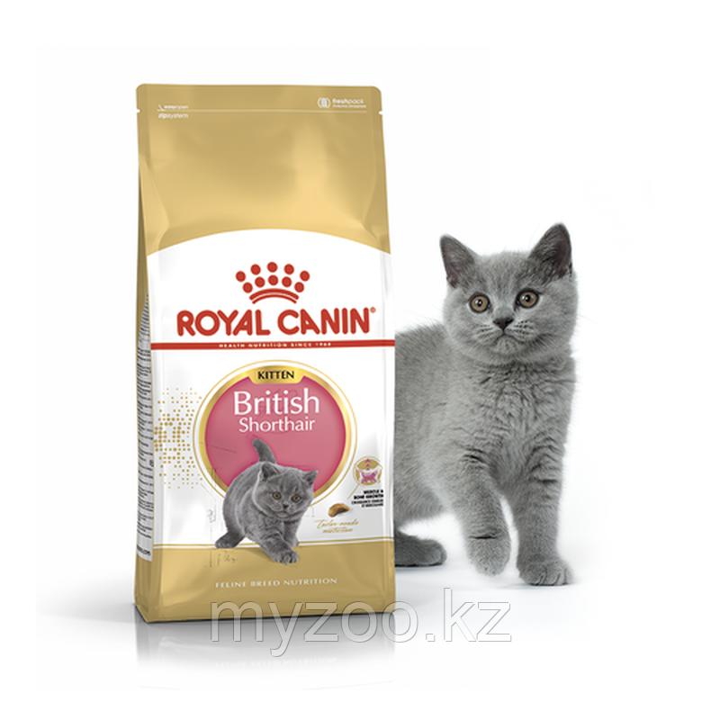 Корм для котят британской породы Royal Canin BRITISH SHORTHAIR KITTEN 400 g