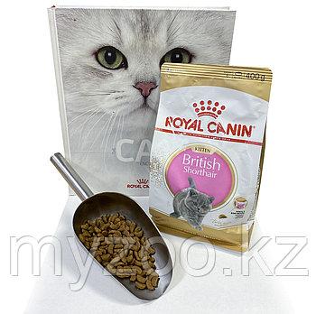 Royal Canin British Kitten, 1 кг на вес | Роял Канин Бритиш киттен корм для британских котят|