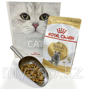 Royal Canin British, 1 кг на вес | Роял Канин Бритиш корм для взрослых британцев|