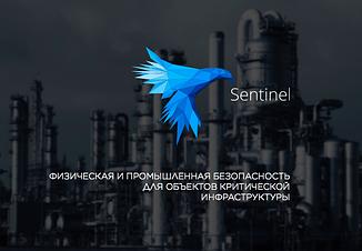 Программная платформа безопасности Sentinel S