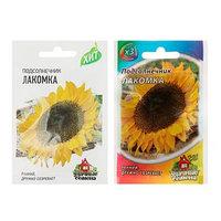 Семена Подсолнечник 'Лакомка', 5 г (комплект из 10 шт.)