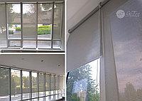 Ролл шторы сетка, фото 1