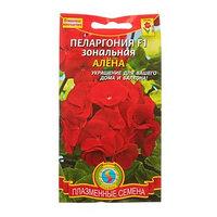 Семена комнатных цветов Пеларгония зональная 'Алена' F1 комнатная, 3 шт (комплект из 10 шт.)
