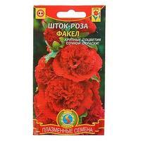 Семена цветов Шток-роза 'Факел', Дв., 12 шт (комплект из 10 шт.)