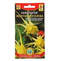 Семена цветов Аквилегия 'Жёлтая королева', Мн., 0,05 г (комплект из 10 шт.)