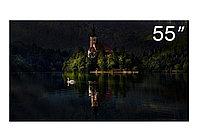 Широкоформатный монитор для видеостен, 700 nit, шов 3,5 мм, диагональ 139 см Philips BDL5588XH/02