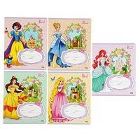 Тетрадь 12 листoв линейка 'Принцессы и замки-2', обложка картон хромэрзац, 5 видов МИКС (комплект из 25 шт.)