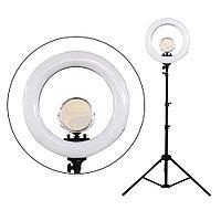 LED Лампа для визажиста кольцевая R-48 Ø46, напольная (в ассорт.) №88334(2)