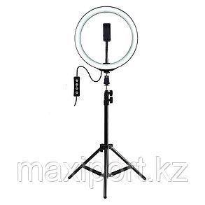 Кольцевая лампа 36см YQ-360C со штативом 210 см и держателем для смартфона, фото 2