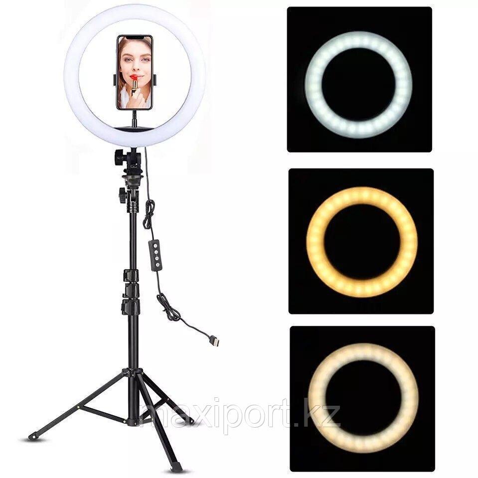 Кольцевая лампа 36см YQ-360C со штативом 210 см и держателем для смартфона
