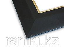 Пластиковая рама в Алматы (цвет черный)