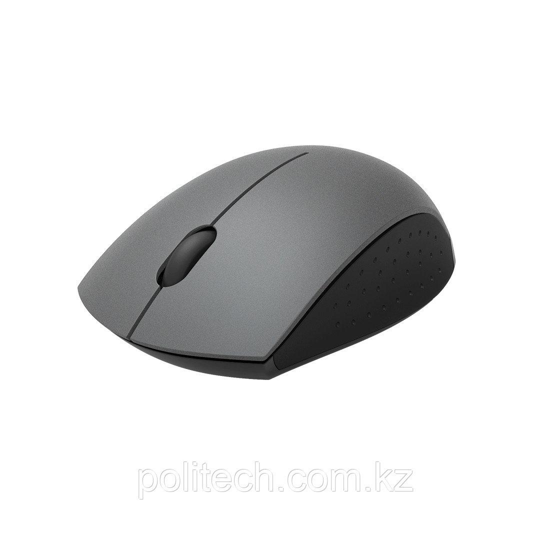 Компьютерная мышь Rapoo 3360 Серый
