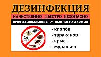 Дезинсекция от клопов (санитарная обработка от насекомых)