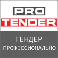 Профессиональное индивидуальное обучение тендерам