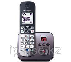 Panasonic Dect KX-TG6821CAМ