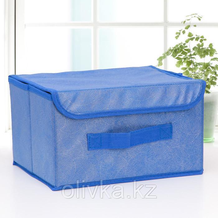 Короб для хранения с крышкой «Фабьен», 26×20×16 см, цвет синий