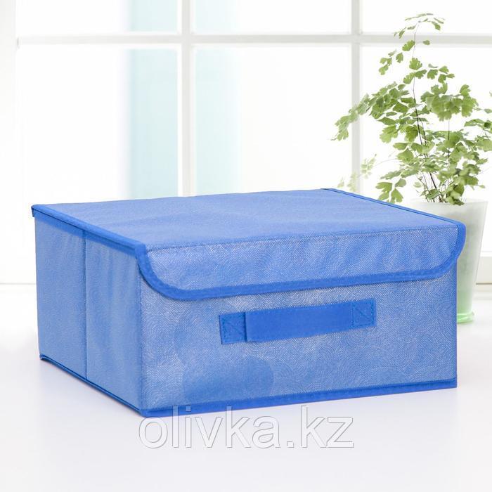 Короб для хранения с крышкой «Фабьен», 30×28×15 см, цвет синий