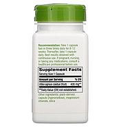 Nature's Way, Плоды витекса, 400 мг, 100 веганских капсул, фото 2