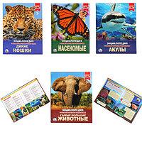 Энциклопедии для дошкольников ...