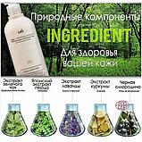 Безсульфатный органический шампунь с эфирными маслами Lador Triplex Natural Shampoo, фото 3