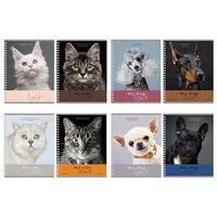 Тетрадь 96 листов в клетку, на гребне 'Про котов и про собак', МИКС, двойная обложка (комплект из 4 шт.)