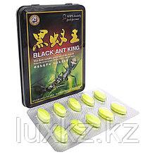 Чёрный Муравей Black ant king