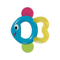 Baby-Nova Кольцо зубное «Рыбка»