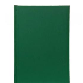 Ежедневник CARIBE зеленый (не датированный)